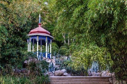 Осень в Никитском ботаническом саду