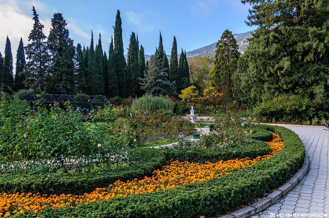 Розарий в Никитском ботаническом саду