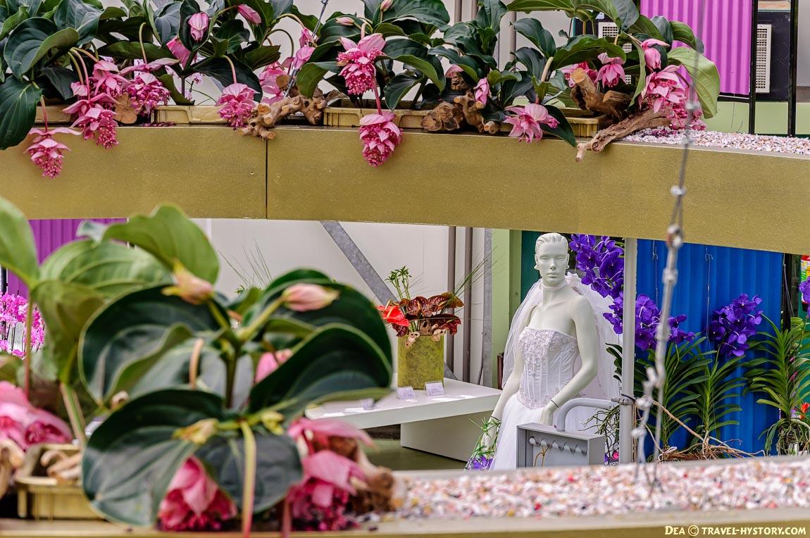 Парк тюльпанов Кекенхоф