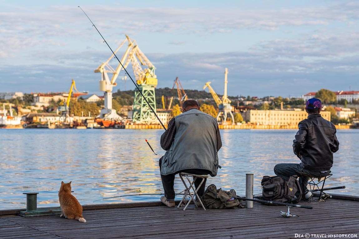 Кот и рыбаки на Графской пристани в Севастополе