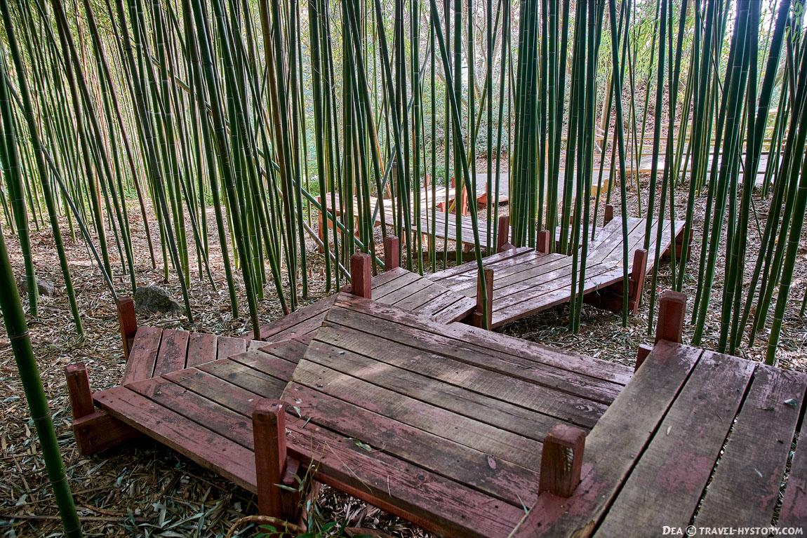 Приморский парк Никитского Ботанического сада
