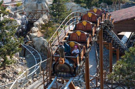 Парк чудес и приключений «Дримвуд» в Крыму